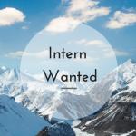 Paid internships: Intern wanted advert
