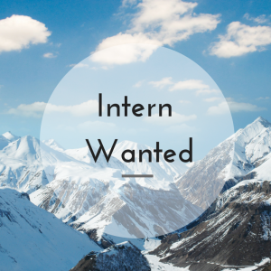 Paid internships: Intern wanted advert