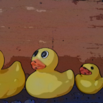 four yellow rubber ducks in a row
