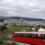 The big picture - Wellington city from the botanic gardens