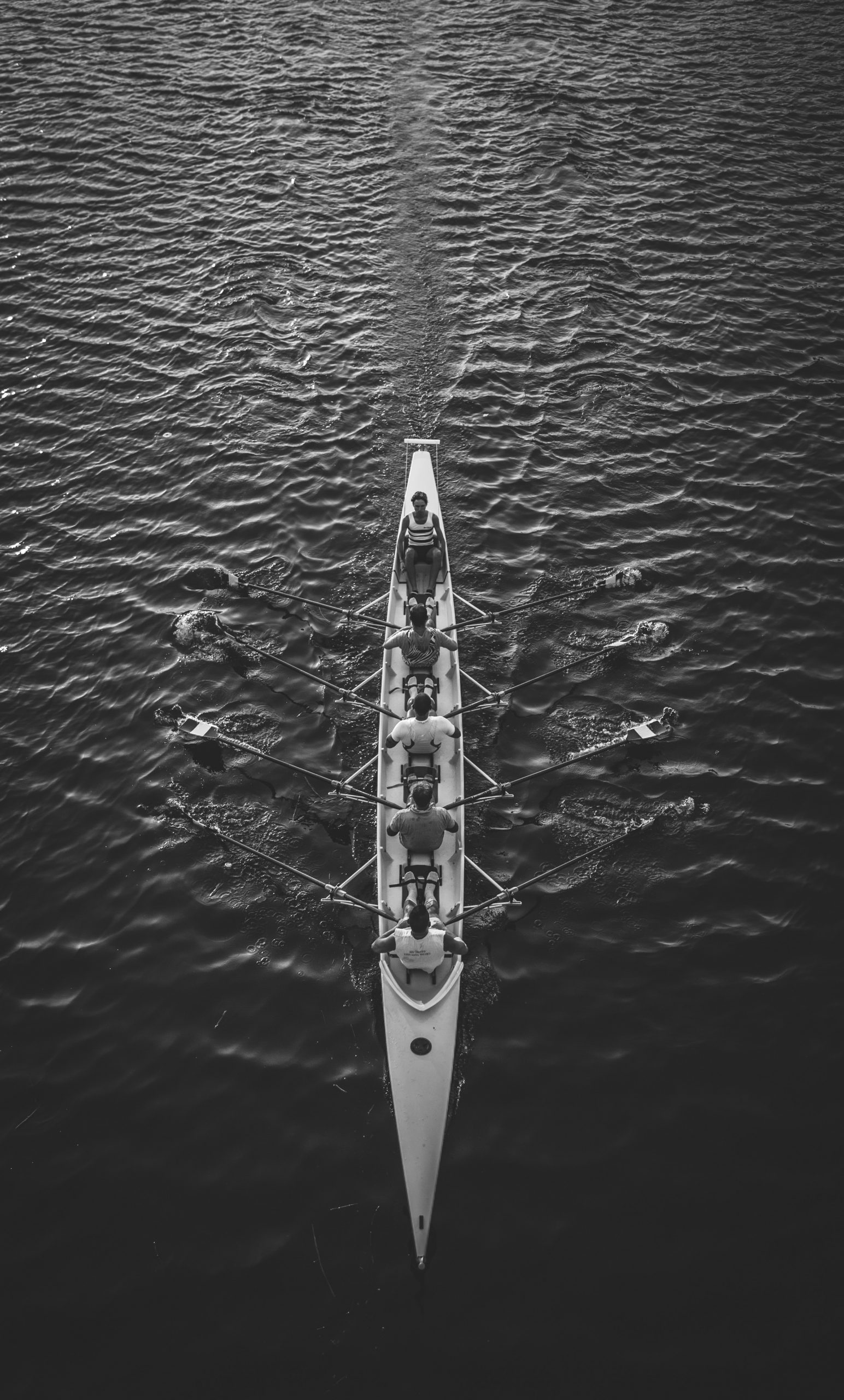 Black and white photo of a rowing team in a boat on the water