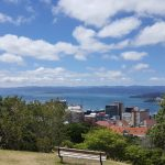working remotely - a sunny day with bench on a hill overlooking Wellington harbour